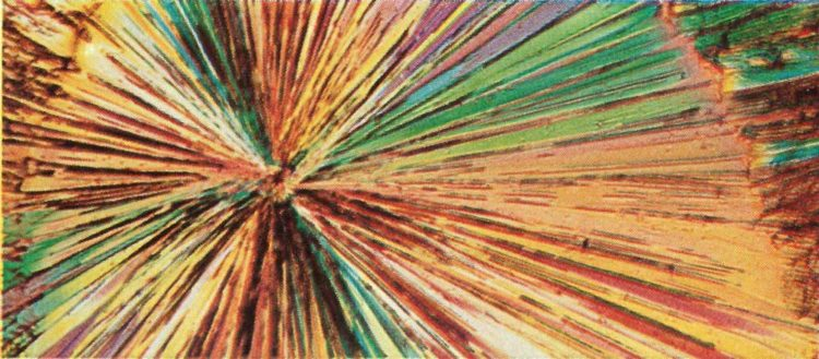 A photomicrograph showing crystals of vitamin B1 (thiamine). Merck succeeded in synthesizing the vitamin in 1936. Courtesy Merck.