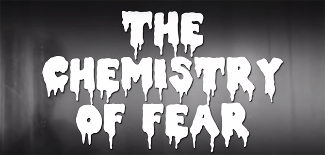 chemistry of fear