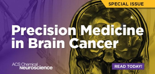 Precision Medicine in Brain Cancer