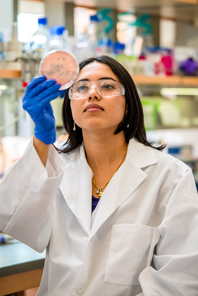 Meet the Winners of the 2018 ACS Infectious Diseases Young